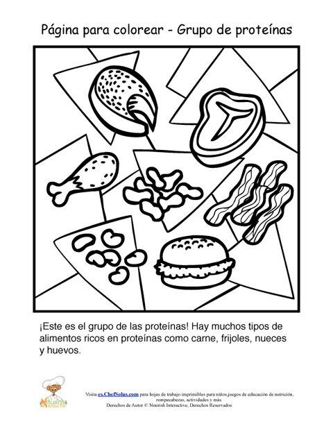 Hoja para colorear del grupo alimenticio de las prote nas Clasificacion de equipo de cocina