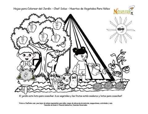 Historia del Jardín de la Pirámide Alimenticia Página 8 - Huertos de ...