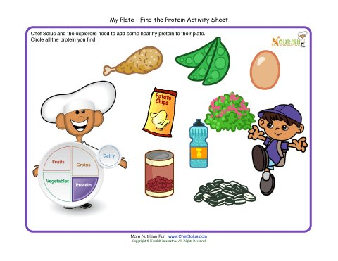My Plate Activity For Children Protein Food Group Make