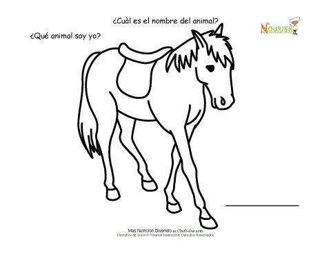 Página De Datos Divertidos Y Para Colorear De Animales De